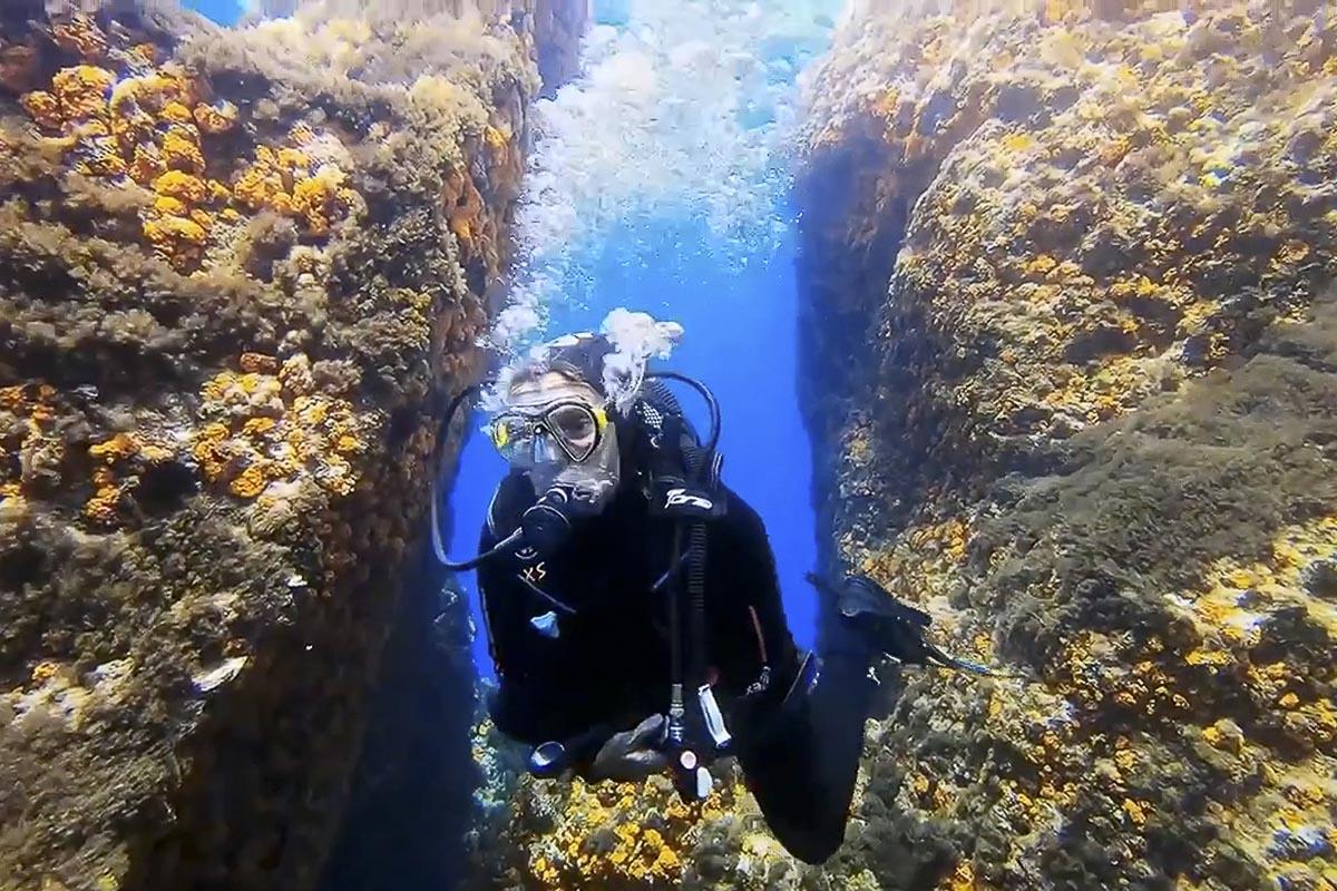 Corso Dive Control Specialist